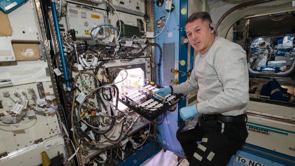 Los astronautas de la Estación Espacial Internacional cultivan pimientos chile por primera vez para la NASA